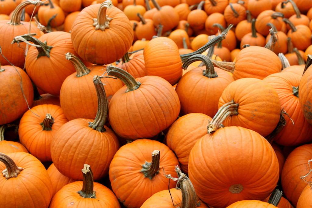 ハロウィンにかぼちゃは食べる?