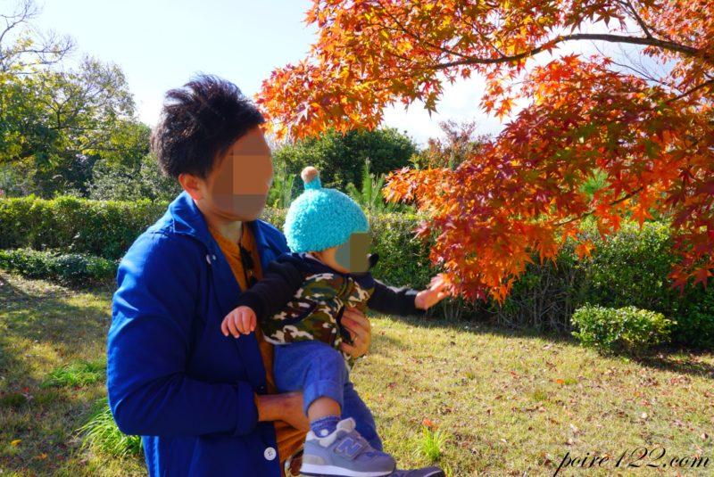 あすたむらんど徳島 紅葉