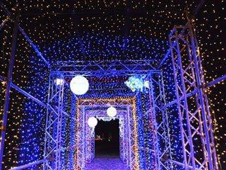 あすたむらんど徳島の光りのトンネル