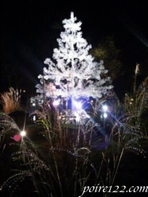 夜のガラスのツリー
