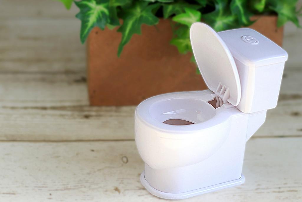 【夢占い】トイレの夢は汚いほど吉夢!?夢の意味とは