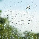 【夢占い】雨の夢の意味は好転の前触れ
