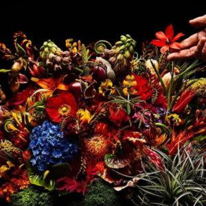 フラワーアーティスト・東信の作品の特徴は?花の値段をチェック!